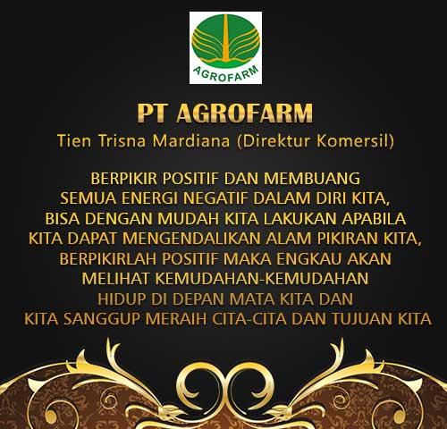 testimoni PT Agrofarm